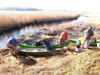 splywy_canoe_biebrza_01