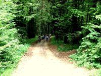 wycieczki_rowerowe_biebrza_18